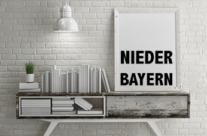 Übersicht Niederbayern-Krimis